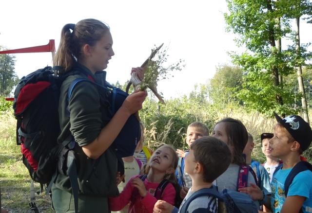 Kroužek Lesní pedagogiky